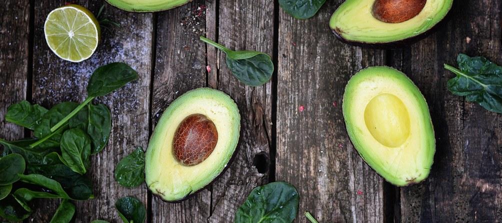 avocado-9x4